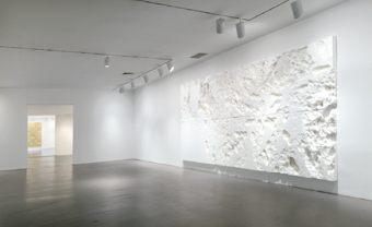 Rudolf Stingel / Exhibition View, Whitney Museum, New York / 2008