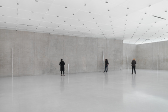 "Roni Horn / White Dickinson, installation view, ""Well and Truly"", Kunsthaus Bregenz, 2010  / 2010"