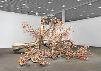 "Bharti Kher / ""The Wag Tree"", installation view, Art Unlimited 2009 / 2009"