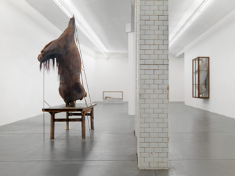 Berlinde De Bruyckere / Exhibition view, Hauser & Wirth Zürich / 2010