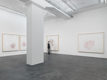 "Roni Horn / ""Selected Drawings 1984-2012"", exhibition view, Hauser & Wirth Zürich / 2012"