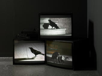 "Douglas Gordon / ""24 Hour Psycho Back and Forth and To and Fro"", exhibition view, Galerie Eva Presenhuber, Zürich / 2009"