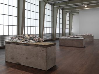 "Berlinde De Bruyckere / ""Three Sculptures"", exhibition view, Hauser & Wirth, Zürich  / 2012"