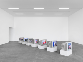 "Sturtevant / ""Image Over Image"", exhibition view, Kunsthalle Zürich / 2012"