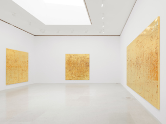 Rudolf Stingel / Exhibition view, Gagosian Gallery, Paris / 2012