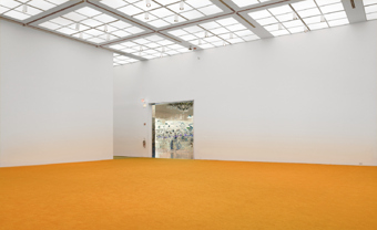 Rudolf Stingel / Exhibition view, Museum of Modern Art, Chicago / 2008
